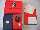 Game Scattergories Game in Bartlett, Illinois